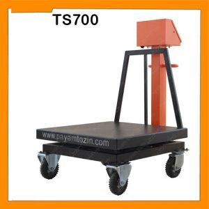 باسکول 700 کیلویی پیام توزین مدل TS700